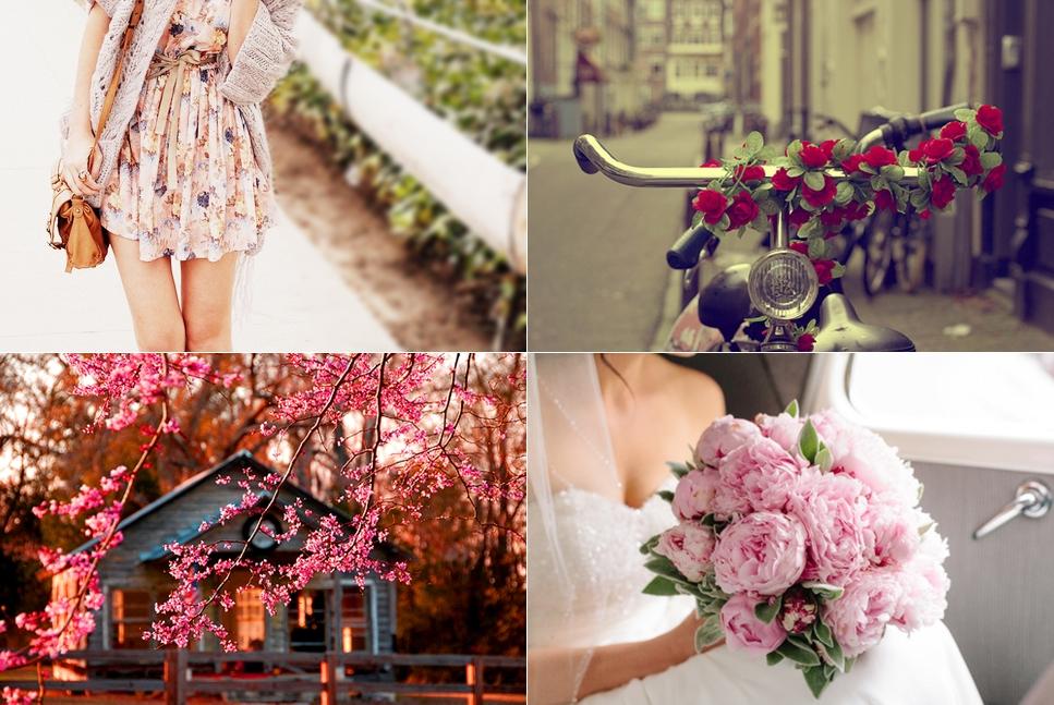 fotos-primavera1