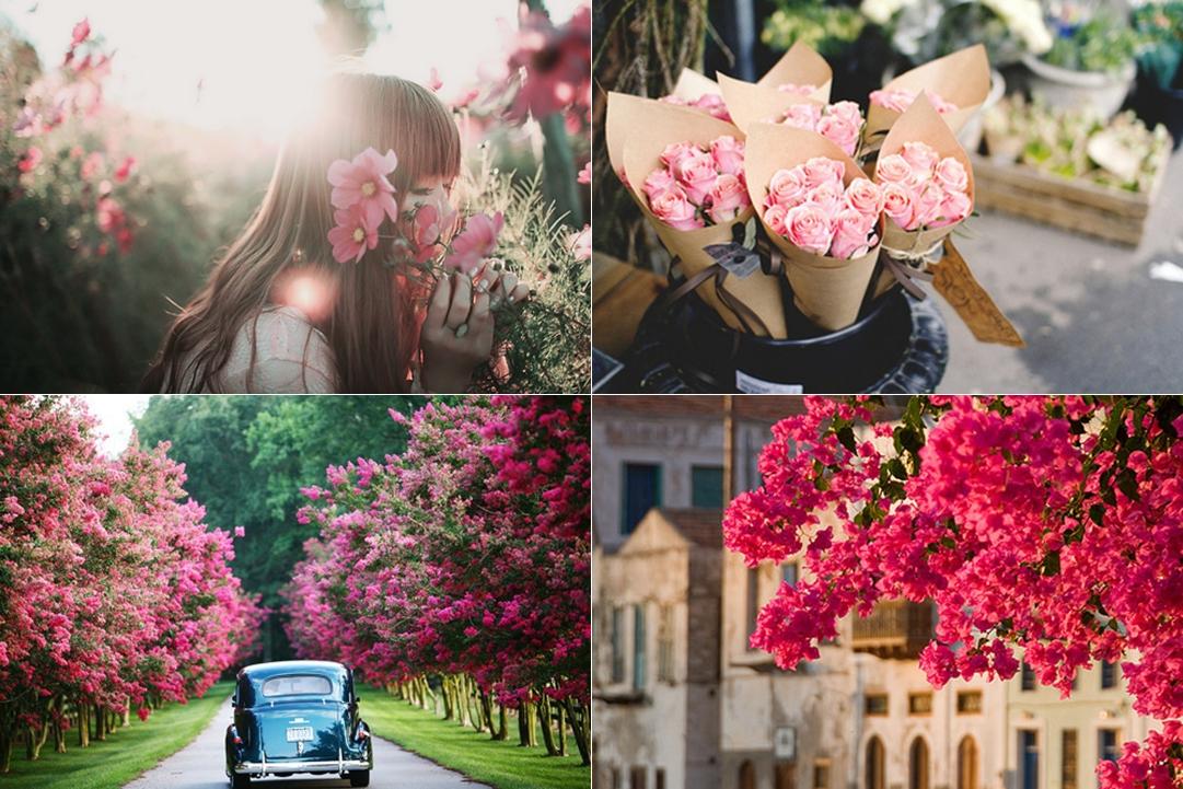 fotos-primavera4