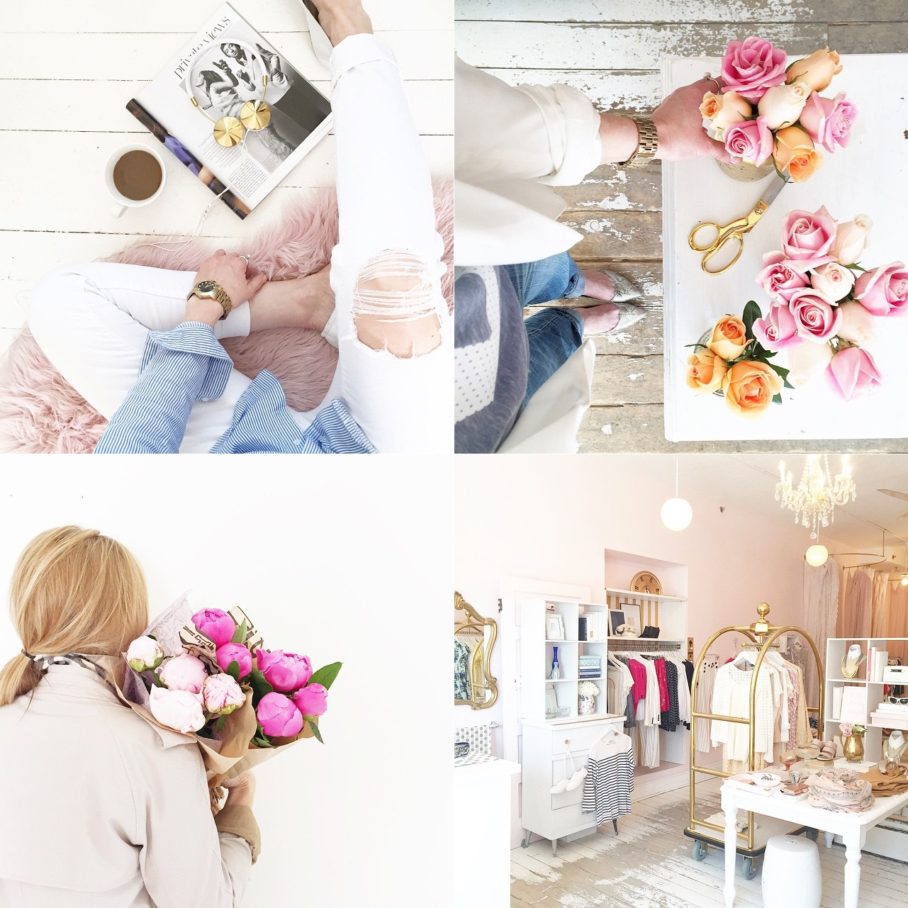 instagram-seguir-blushshop