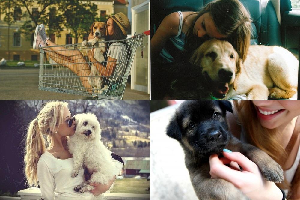inspiração-fotos-com-seu-cachorrinho3