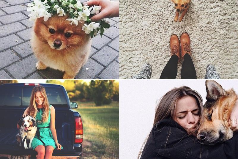 inspiração-fotos-com-seu-cachorrinho8